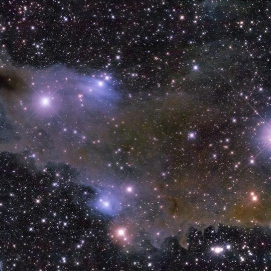 VdB 149 - Shark nebula
