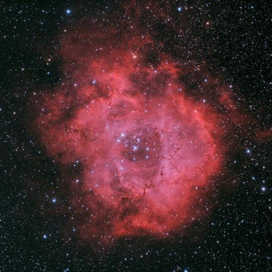 NGC2238 - Rozetta-köd