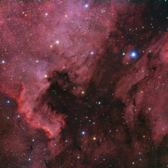NGC7000, IC5070 - North American and Pelican Nebula
