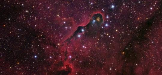 IC1396 - Elefántormány-köd