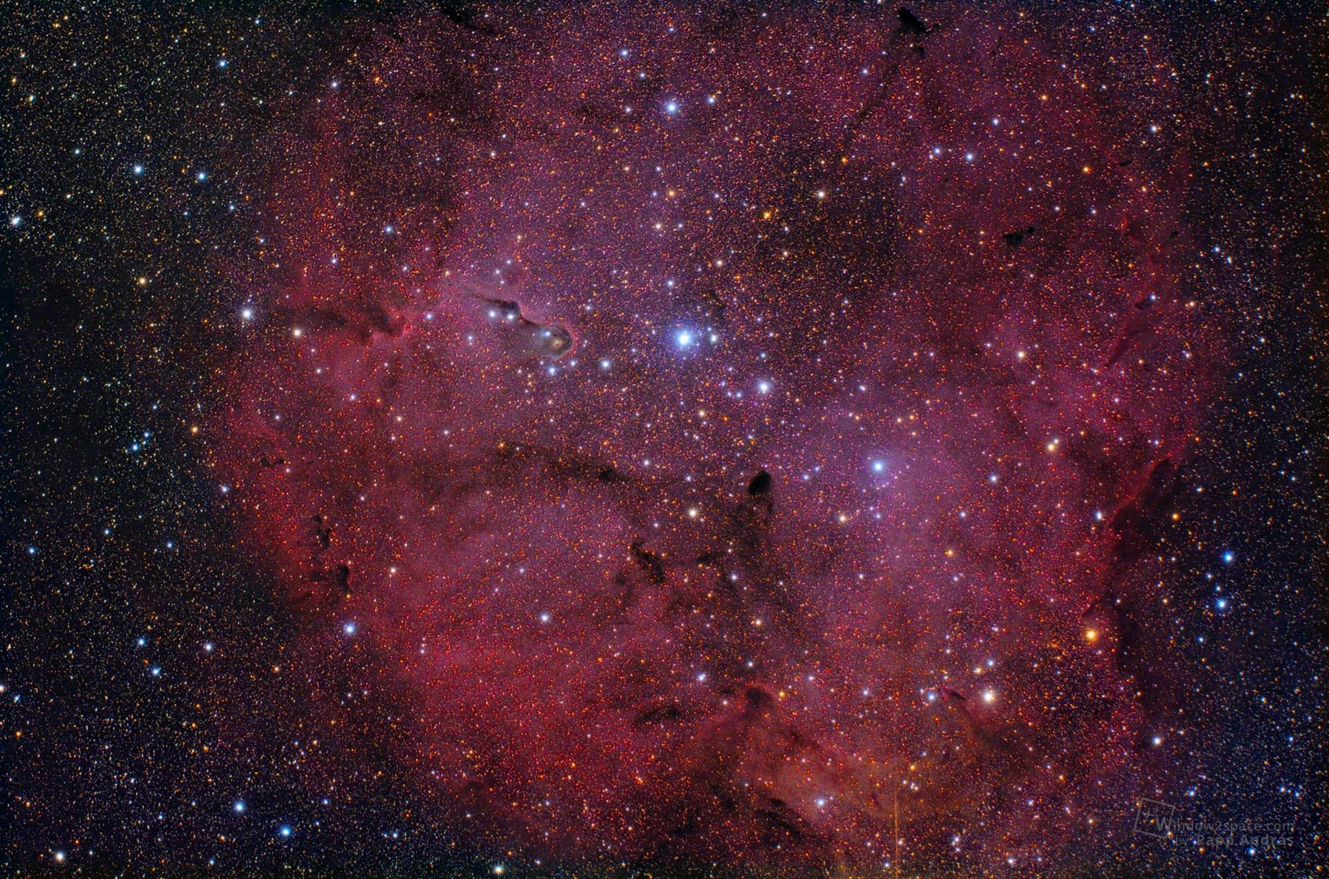 IC1396 - Az Elefántormány-köd