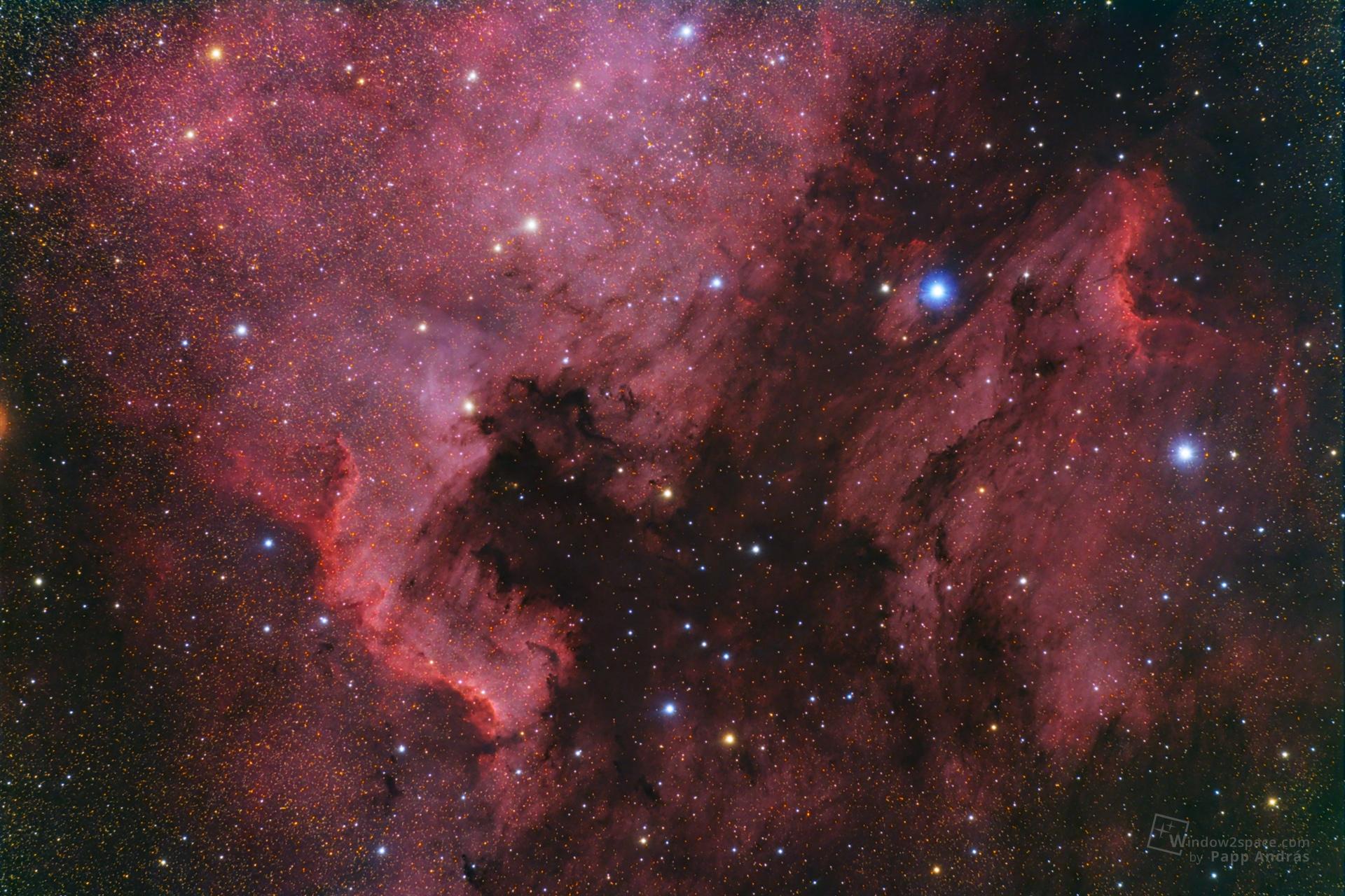 NGC7000 - Az Észak-Amerika-köd / IC5070 - Pelikán-köd